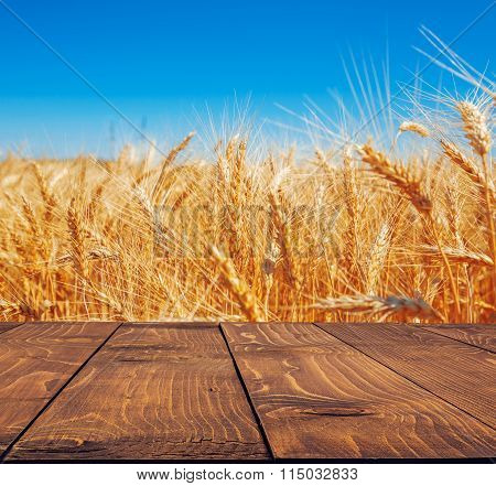 Gold Wheat Field And Blue Sky With Empty Rustic Table