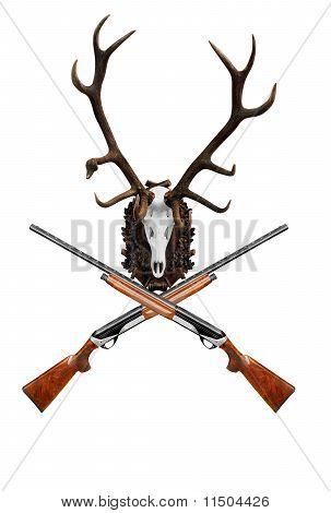 deer skull with big horn trophy