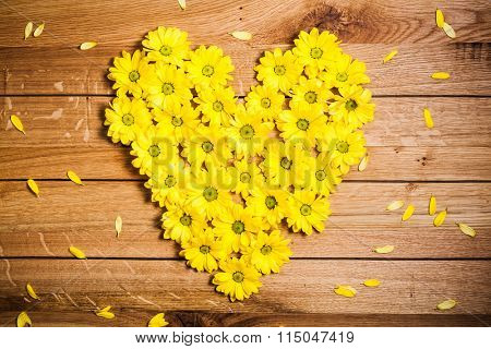 Fresh spring flowers in heart shape among petals on rustic grunge wood. Valentine's Day, love, Mother's Day etc concepts.