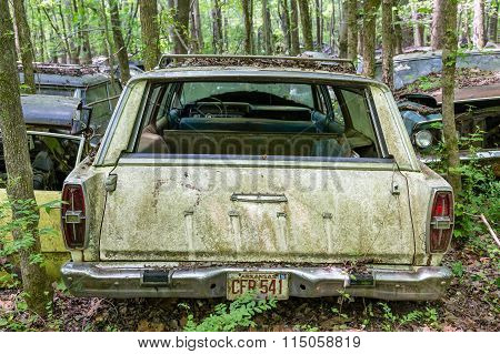 Arkansas Ford Wagon