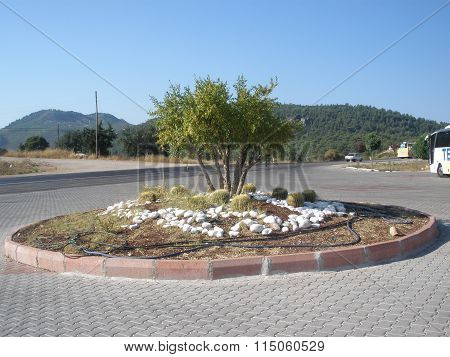 Flowerbed In The Mountains