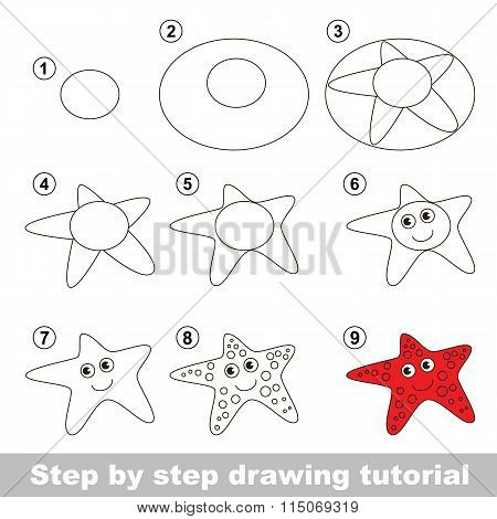 Drawing tutorial. How to draw a Starfish