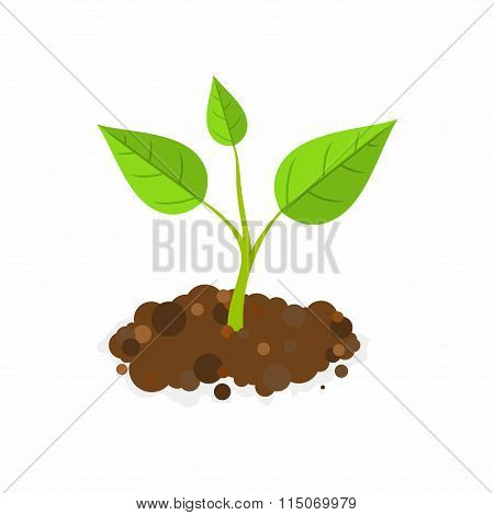 Sprout in the ground. Vector Illustration