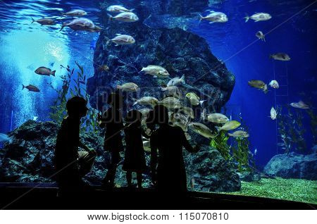 Silhouettes of family with two kids in oceanarium, looking at fishes in aquarium