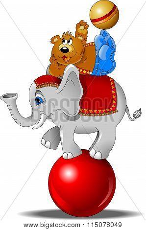 Elephant And Bear