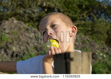 Apple Bite Child