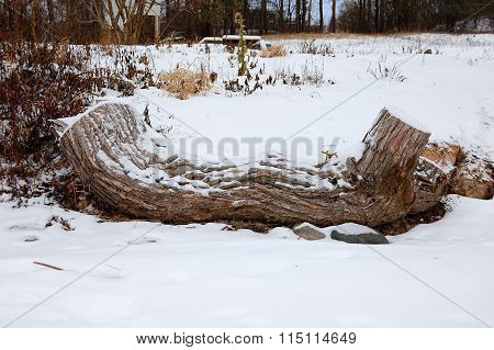 Felled Tree On A Winter Glade. Natural Bench For Rest