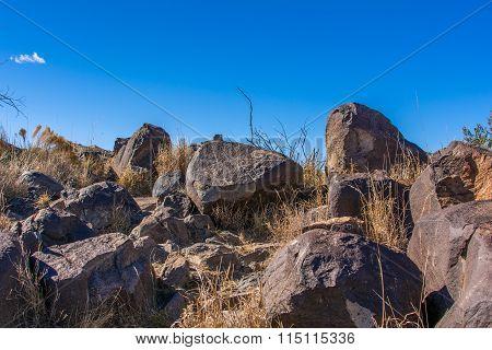 Big Horn Sheep Petroglyph