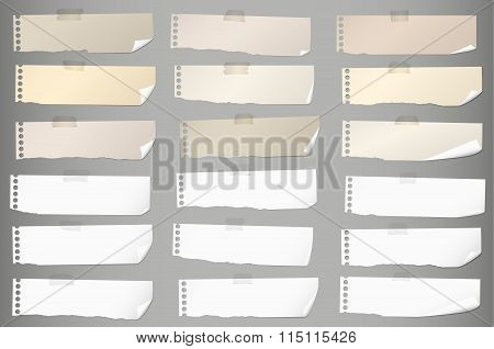 Pieces of torn white, brown blank note paper with adhesive tape