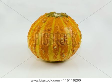 Orange And Bumpy Gourd Used For Decor Or Cooking