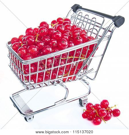 Mini Shopping Cart With Redcurrants