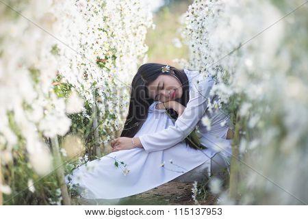 Beautiful Vietnamese girl with traditional dress (ao dai) is in white daisy flower garden in Hanoi, Vietnam