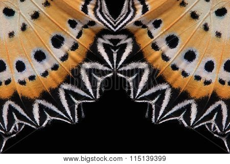 Concept Design. Butterfly Wings (the Leopard Lacewing) Isolated On Black Background.