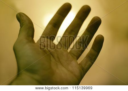 Human Hand On A Blured Light Background