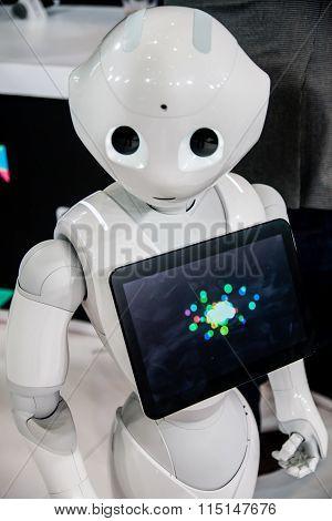 2016 Ces Robot