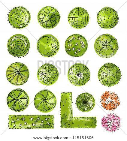A Set Of Treetop Symbols, For Architectural Or Landscape Design.vector