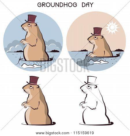 Groundhog Day Animal. Vector Symbol Of Marmot On White