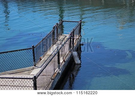 Extension of pier in water with visible kelp bed