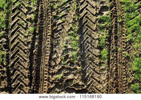 Tractor tyre track