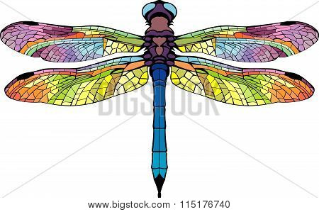 Bright Stylized Dragonfly