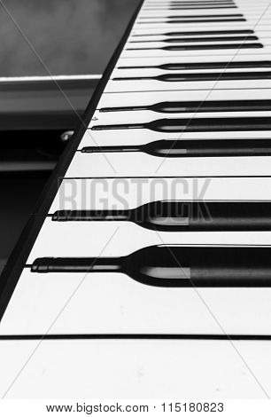 Wine Bottle Piano Abstract