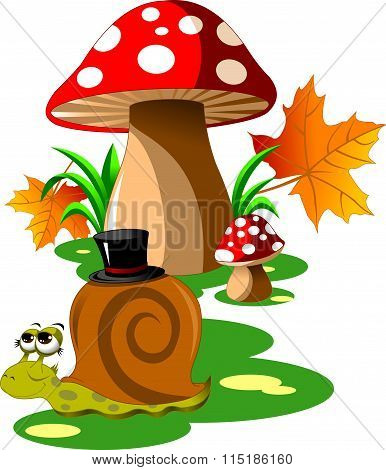 Snail And Mushroom