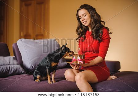 Woman And Toy Terrier With Dog Cake On Sofa
