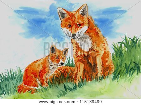 Fox With Pup On The Grass
