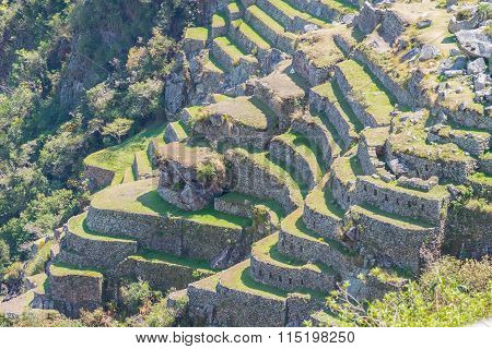 Sunlight On Machu Picchu Terraces From Above, Peru