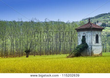 Langhe, Summer Landscape