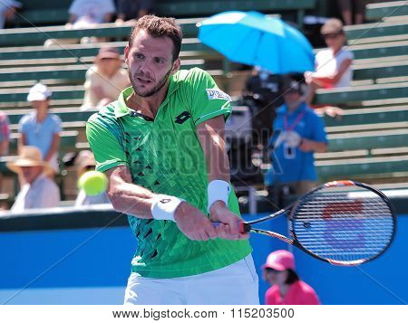 Paul-Henri Mathieu backhand and ball