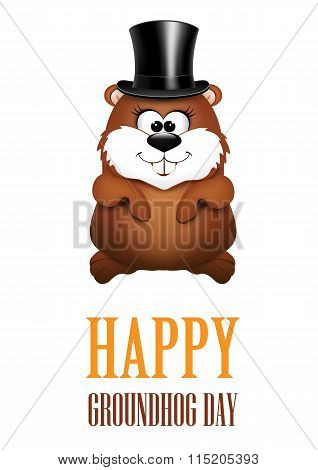 Happy Groundhog Day greeting Cards.
