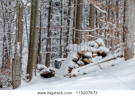 Firewood stacked on the ground in winter
