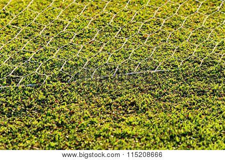 Foot Ball Field