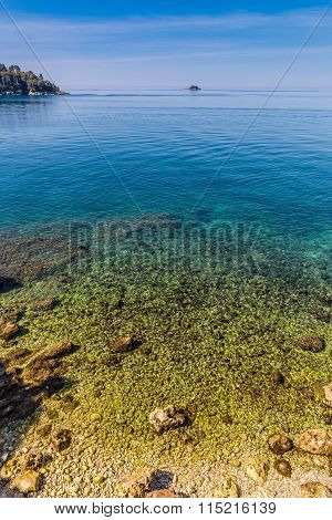 Beautiful Seashore Near Rovinj-istria, Croatia