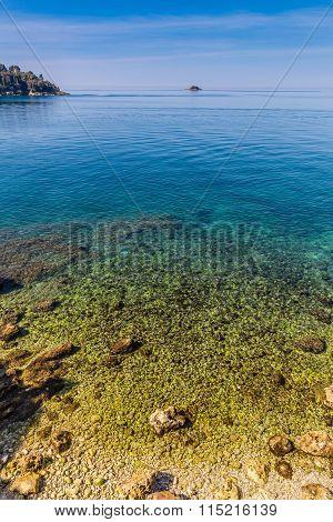 Beautiful Seashore Near Rovinj-istria, Croatia