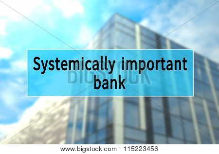 Systemically Important bank