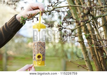 Man Hanging Bird Feeder In Garden