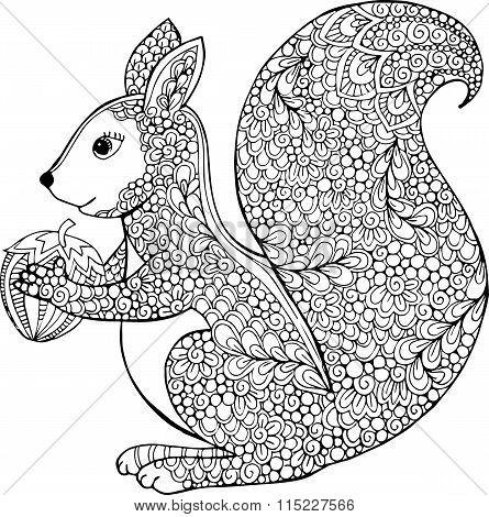 Hand drawn vector outline squirrel illustration