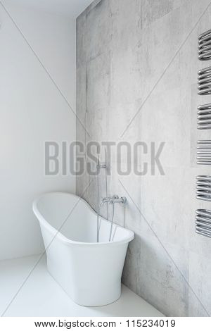 Tasteful And Porcelain Bathtub