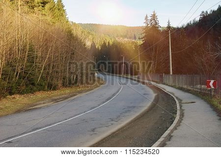 Winding Road Through A Forest