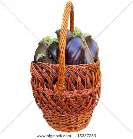 Basket With Fresh Eggplants.