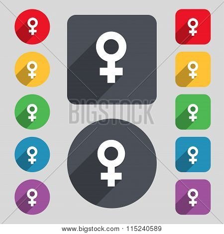 Female Icon Sign. A Set Of 12 Colored Buttons And A Long Shadow. Flat Design.