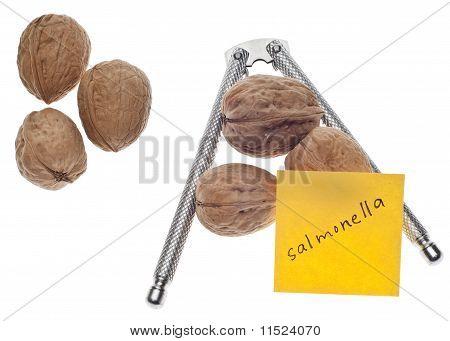 Salmonella Warning