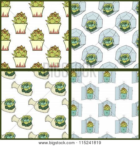 Set of four seamless patterns with hand drawn succulents