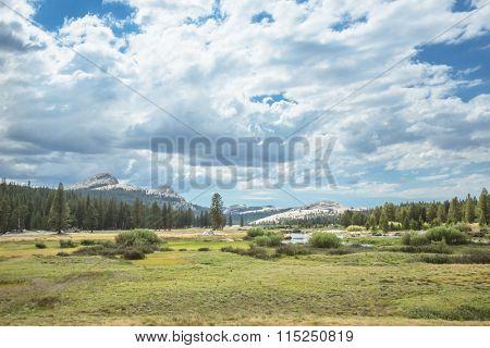 landscape of Yosemite National Park, USA.
