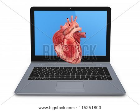 Human heart on a screen of notebook.