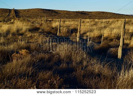 Rural Rustic Fence