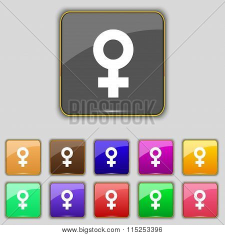 Female Icon Sign. Set With Eleven Colored Buttons For Your Site.