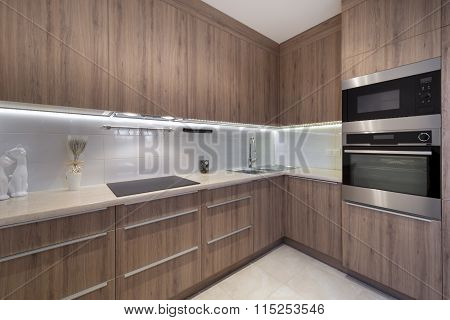 Modern Luxurious Kitchen